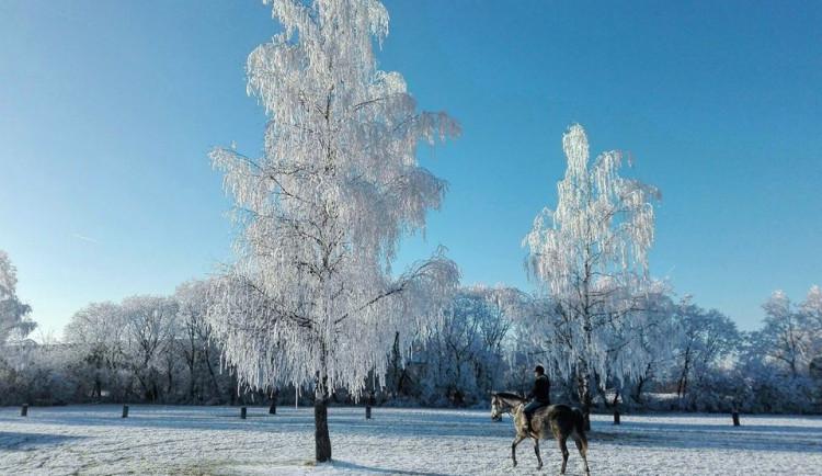 Tuhé lednové mrazy na jihu Čech