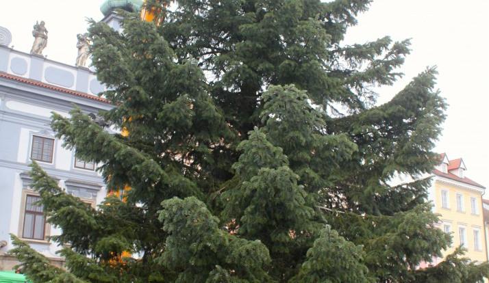 Usazování vánočního stromu na budějcké náměstí