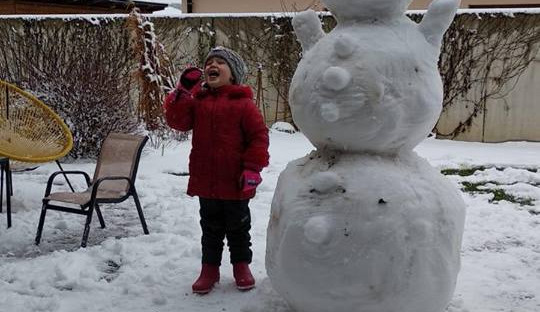 Jihočeši staví sněhuláky